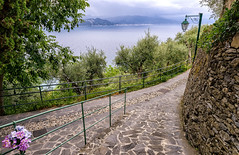 Seaside Path (Shutterscript) Tags: ocean road trees light sea italy mountains flower water lamp stone landscape path railing portofino