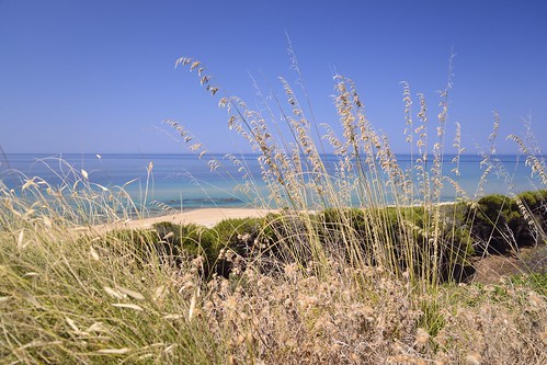 Sicily 2014 398