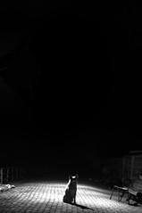 true fidelity (Javajavon) Tags: chile bw favorite dog white black luz face true animal night photography photo calle flickr lol sony can follow perro paseo vida etc animales moment alpha mascota chaya facebook fiel perra blanconegro a58 fidelity tomé favorito siente tumblr sonyalphaa58