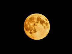 full moon (Stiller Beobachter) Tags: moon night shy
