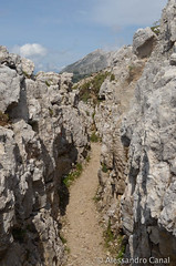 Trincee scavate nella roccia