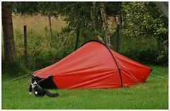 camping Bob..........
