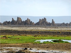 """Lac Abbe Djibouti • <a style=""""font-size:0.8em;"""" href=""""http://www.flickr.com/photos/62781643@N08/14810240730/"""" target=""""_blank"""">View on Flickr</a>"""