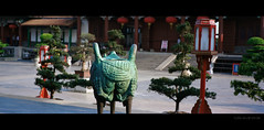 2014032502 (tlong_zhuhai) Tags: travel color film tourism landscape kodak hasselblad epson 90mm xpan f4 zhuhai perfection 1520 jobo v700 50d 5201 selfdevelop ecn2 378 4ccd