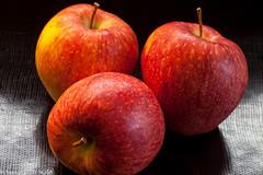apple, dining room, malus, rlcrechouse, jdy063 XX201303048325.jpg (rachelgreenbelt) Tags: apple malus rosaceae familyrosaceae rosaceaefamily