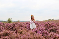 In the heather I (gingerlillytea) Tags:
