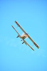 Hoosier Dawn Patrol (The Academy of Model Aeronautics) Tags: scale aircraft military wwi worldwari historical dawnpatrol hoosierdawnpatrol
