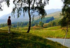 Daydreaming Glen Clova (ronramstew) Tags: landscape scotland angus loch 2014 platinumheartaward 2010s glencova lochheath