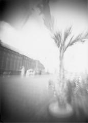 "Laatikkokamerakuva_039 • <a style=""font-size:0.8em;"" href=""http://www.flickr.com/photos/100484988@N03/15048526431/"" target=""_blank"">View on Flickr</a>"
