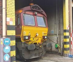 66027 (DBS 60100) Tags: class66 ews 66027 dbschenker knottingleydepot