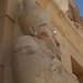 Hatshepsut Temple_9412