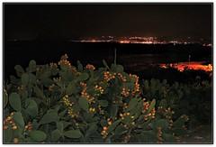 Fichi d'india (Schano) Tags: panorama landscape sony paesaggio fichidindia trapani notturno bonagia seratadestate ilce3000 sonyilce3000