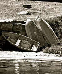 IMG_6492 (david.tomasi) Tags: park new trip bw white black monochrome ferry wales boats barca south sydney royal australia barche boote national e nsw sw australien weiss bianco ferries nero schwarz bianconero cronulla