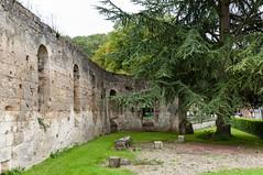 Prémontré - Aisne (DavidB1977) Tags: france picardie aisne prémontré arbre ruines nikon d90 18105 abbey abtei abbaye abbazia monastery kloster klosterruine ruine ruina rovine premonstratensian