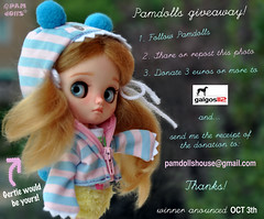 PAMDOLLS giveaway  to HELP GALGOS DOGS