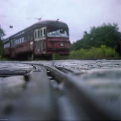 Off My Trolly (BunnySafari) Tags: film dof traintracks trains labourday fpp yashica124g kodakportra160 haltoncountryrailwaymuseum retiredtram