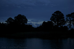 The Blue Hour - Florida (D & E Grey Wolf Photography) Tags: blue trees sunset sky water night clouds florida