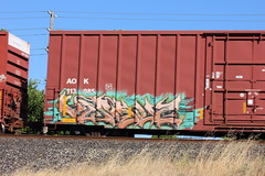 06212015 112 (CONSTRUCTIVE DESTRUCTION) Tags: train graffiti streak tag boxcar graff piece moniker versuz