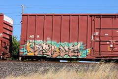 06212015 112 (CONSTRUCTIVE DESTRUCTION) Tags: train graffiti streak tag boxcar graff piece moniker versuz