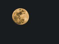 Full moon (DST-photography) Tags: night exposure boeing moon full fullmoon phoenix arizona usa america europe light bright yellow white black contrast saturation handheld