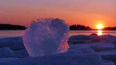 Glowing ice at sunset (Lauttasaari, Helsinki, 20170305) (RainoL) Tags: 2017 201703 20170305 balticsea drumsö fin finland fz200 geo:lat=6015036995 geo:lon=2486930233 geotagged goldenhour helsingfors helsinki hevosenkenkälahti hästskoviken ice lauttasaari march nyland sea seashore sunset tiiraluoto tirklacken uusimaa water winter