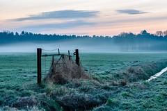 Nebel im Brook (webpinsel) Tags: brook felder frühmorgens frühling halteramsee landschaft natur sythen
