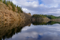 Reflections on Loch Drunkie (Douglas Hamilton ( days well spent )) Tags: loch drunkie trossachs scotland douglas hamilton winter reflections outdoors trees aberfoyle