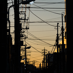 Strings (H.H. Mahal Alysheba) Tags: tokyo twilight snapshot evening city japan street lumix gx7 canon macro ef100mm28l kipon efmft