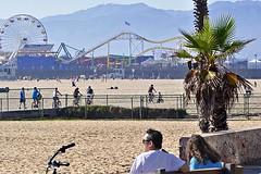 Pacific Park on the Pier (AntyDiluvian) Tags: california losangeles la santamonica beach santamonicabeach santamonicastatebeach park amusementpark pacificpark pier santamonicapier
