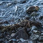 Iceland - Mt. Kirkjufell Region thumbnail