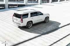 Custom 2017 Cadillac Escalade SUV - Ben Revzin Photography 2017-6 (BenRevzinPhotography) Tags: cadillac cadillacescalade caliwheels rims suv white automotive 2017 escalade