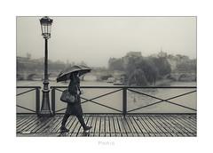 Paris n°139 - Passing By (Nico Geerlings) Tags: paris parijs france pontdesarts seine pontneuf iledelacite rain rainy raining streetphotography ngimages nicogeerlings nicogeerlingsphotography leicammonochrom 50mm summilux