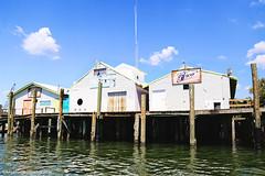 IMG_1873 (Blue Turtle Trawler) Tags: fortmyersbeach shrimpboats sh
