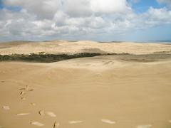113 - Un désert sans fin