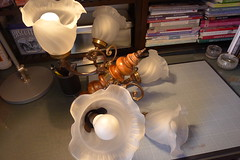 Lustre 5 branches avant (shepio) Tags: meubles 2014 relooking