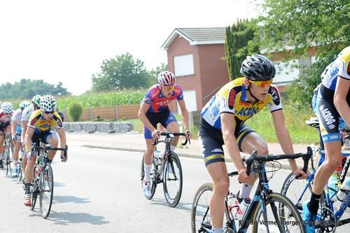 Geel Oosterlo  (52)