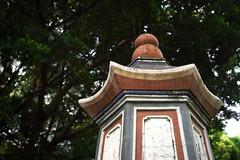 _51 (Taiwan's Riccardo) Tags: color digital sony taiwan evil f45 fixed 15mm asph a7 heliar l39 2014    milc voigtlanderlens