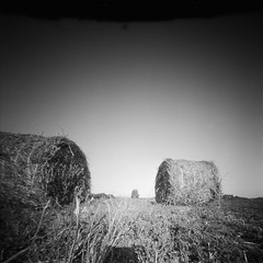 hay-straw reel (anyurtan) Tags: bw 120 film analog landscape handmade straw pinhole d76 reel fomapan