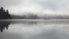 McCauley Pond (Robert Wash) Tags: lake ny newyork fog upstate adirondacks upstatenewyork adk mccauleypond