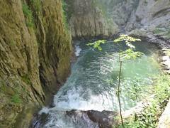 Skocjianske jame (28) (Naturalmentescienza) Tags: grotte jame reka skocjanske timavo sancanziano scanziano
