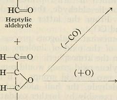 Anglų lietuvių žodynas. Žodis linolenic acid reiškia linoleno rūgštis lietuviškai.