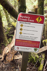 Mystery Creek Caves Track