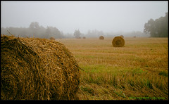 140726-2164-EOSM.jpg (hopeless128) Tags: mist france fields eurotrip haybales strawbales 2014 poitoucharentes bioussac