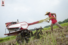 Araro 03 (Soil Cultivation) (ilusyonimages) Tags: street asian photography asia rice farmers farm traditional philippines farming images soil illusion crop filipino ricefields cultivation handtractor ilusyon
