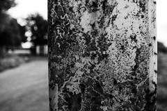 Hob Moor, Post (Rawturnip) Tags: hobmoor