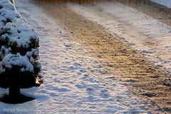 Snow/nieve (Guervs) Tags: winter espaa cloud snow andaluca spain nieve paisaje invierno andalusia nube jan nevado beda