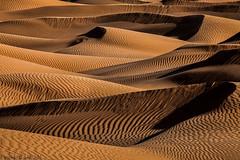 Waves of sand (TARIQ-M) Tags: art texture sahara landscape sand waves pattern desert ripple patterns dunes wave ripples camels riyadh saudiarabia dahna canoneos5dmarkii tariqm aldahna tariqalmutlaq 100606169424624226321poststariqm1