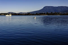 Cassidy's Bay_Mt. Wellington (CASSIDY PHOTOGRAPHY) Tags: tasmania mtwellington cassidysbay