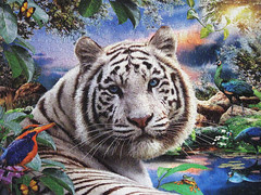 """""""Twilight in Sumatra"""" (Puzzler4879) Tags: art tigers pointandshoot puzzles puzzling canonpowershot whitetigers jigsaws wildlifeart canonaseries canonpointandshoot jigsawpuzzles a590 a590is canona590is canonpowershota590is howardrobinson artisthowardrobinson whitesumatrantigers twilightinsumatra"""