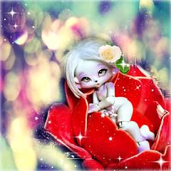 Cute little Diamond (Sakura-Streifchen) Tags: fantasy tiny bjd anthro balljointed balljointeddoll artistdoll ebjd enaibi anthrobjd artistbjd
